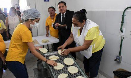 Nueva tortillería en la Col. Quintas de la Hacienda
