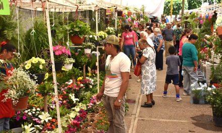 """Del 9 al 25 de marzo """"Feria de las Flores"""""""