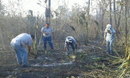 Incendios forestales en la Huasteca