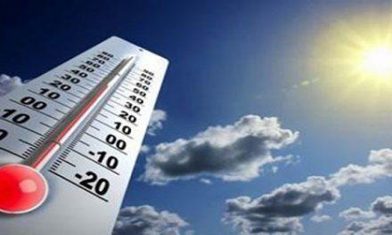 Recomendaciones por altas temperaturas