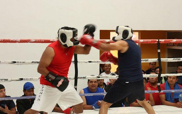 """Representados en el """"Festival Olímpico de Boxeo"""""""