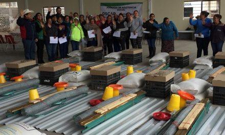 Entrega 133 proyectos de aves de corral: OBV