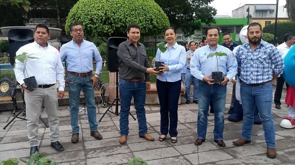 Reforestación de 100 árboles kiris