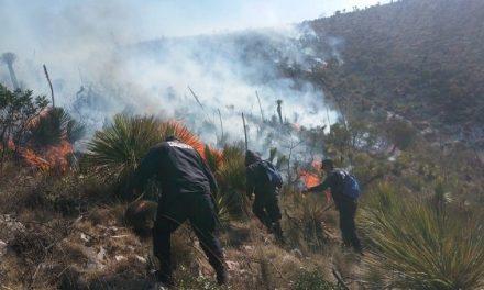 Extinto el incendio en Mexquitic