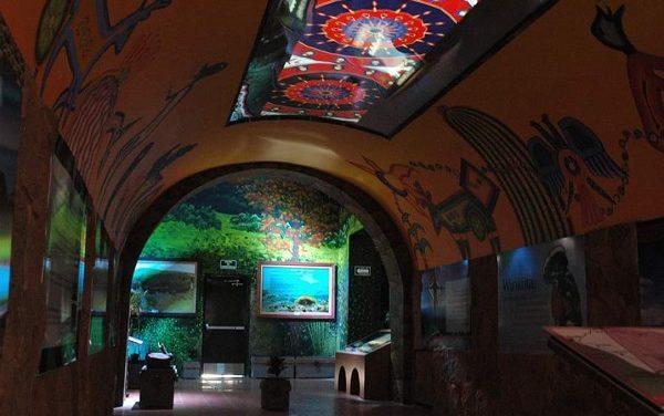 Actividades en el Eco museo Parque Tangamanga I