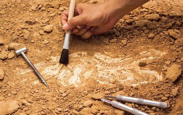"""Invitan a la conferencia """"Arqueología en SLP"""""""