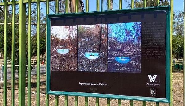 """UniVersitarias"", exposición fotográfica"